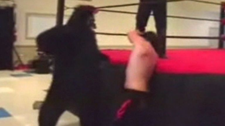 Gregory The Gorilla vs. Nick Cutler